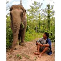Boon Lott's Elephant Sanctuary (BLES)