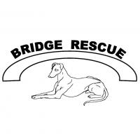 Bridge Rescue