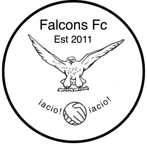 Falcons FC - Taunton