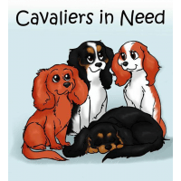 Cavaliers In Need