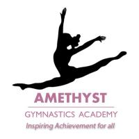 Amethyst Gymnastics Academy