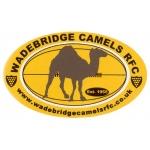 Wadebridge Camels Colts