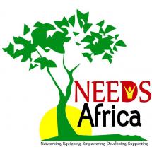 NEEDS Africa