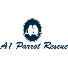 A one parrot rescue