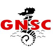 Gravesend and Northfleet Swimming Club