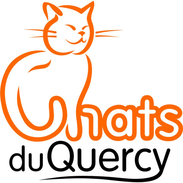 Chats du Quercy cat Rescue and Adoption Charity in France