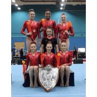 City of Liverpool Gymnastics Club Floor Fund