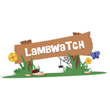 LambWatch - Daniel Procter