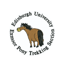 Edinburgh University Exmoor Pony Trekking