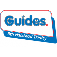 5th Halstead Trinity Guides