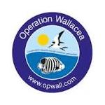 Operation Wallacea 2016 - Shu En Lim