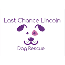 Last Chance Lincoln (Dog Rescue)