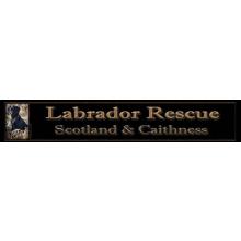 Labrador Rescue Scotland and Caithness
