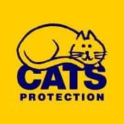 Cats Protection - Honiton