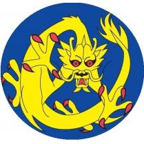 Kin Ryu Judo Club