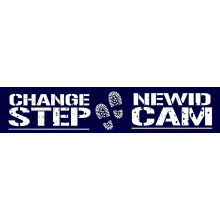 Change Step Veterans Services cause logo