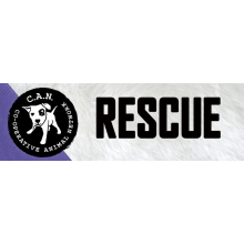 C.A.N. Animal Rescue