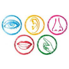 Sen Play Multisensory Play Area cause logo