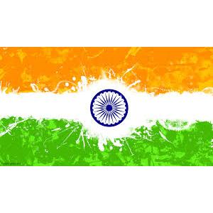 Global leadership India 2017 - Rebecca Osborne