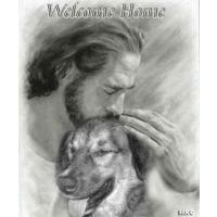 Romanian Dog Rescue - Lyn Sawkins