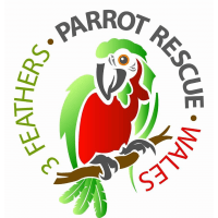 3 Feathers Parrot Rescue Wales