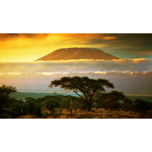 Kilimanjaro  Climb 2016  for Hope for Children - Georgia Buckle