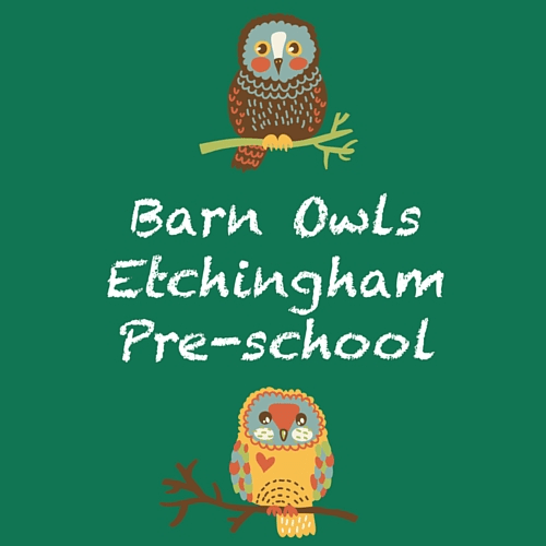 Barn Owls Etchingham Pre-School