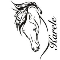 Karele Equine