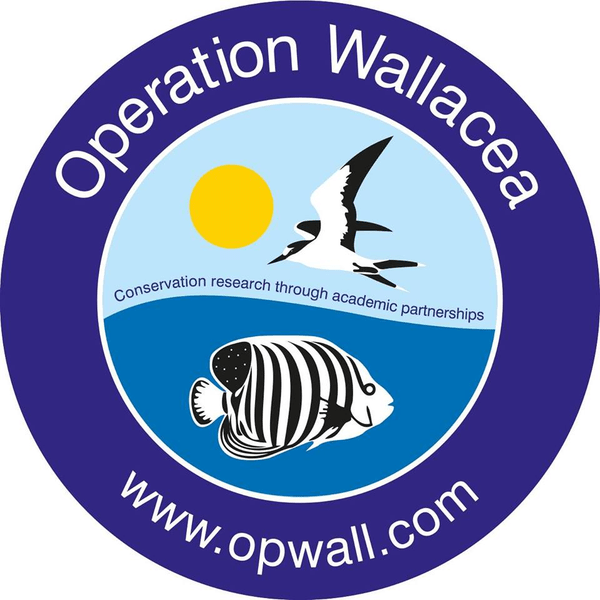 Operation Wallacea Honduras 2017 - Will Wright