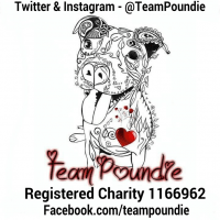Team Poundie  cause logo