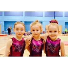 Amber Valley Gymnastics Academy