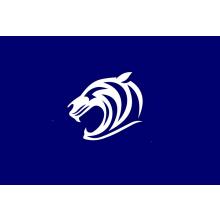 Toton Tigers FC