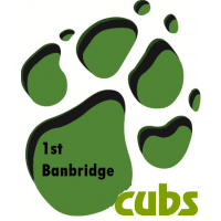 1st Banbridge Cubs