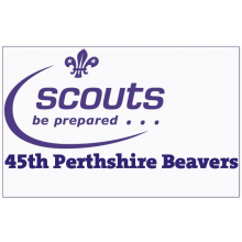 45th Perthshire Beaver Scouts