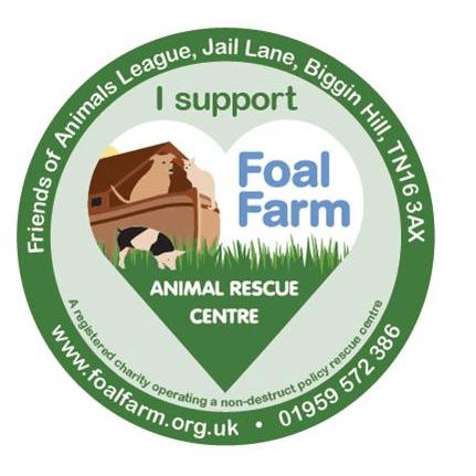Foal Farm - Biggin Hill