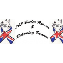 365 Bullie Rescue & Rehoming Service