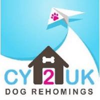 Cy2Uk Dog Rehomings