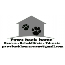 Paws Back Home Rescue