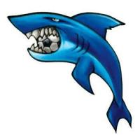 Blurton Sharks FC