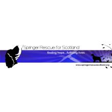 Springer Rescue for Scotland