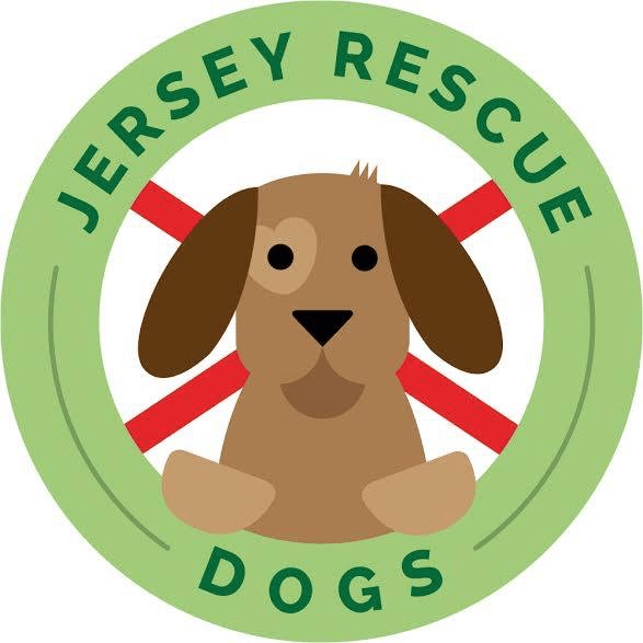 Jersey Rescue Dogs