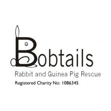 Bobtails Rabbit & Guinea Pig Rescue