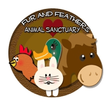 Fur and Feathers Animal Sanctuary
