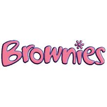 6th Aldridge Brownie Pack
