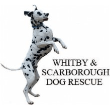 Whitby and Scarborough Dog Rescue