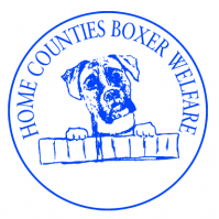 Home Counties Boxer Welfare