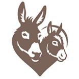 The Donkey Sanctuary - Sidmouth