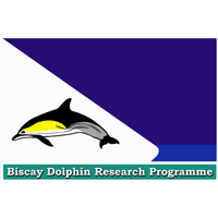 Biscay Dolphin Research Programme cause logo