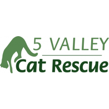 5 Valley Cat Rescue - Stroud