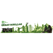 The Great Gorilla Run 2009 - Deborah Minchington